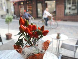 Mehr als 10 Jahre schon wird in der Suppenstube Schwupp die Supp die Liebe für die Suppe an die Besucher der Schweriner Altstadt weitergegeben.